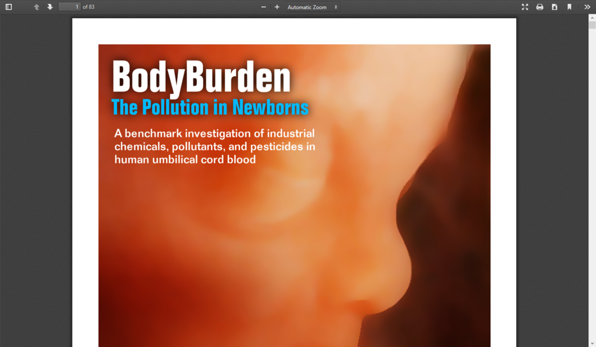 Screenshot 2020-02-06 Body Burden in Newborns pdf