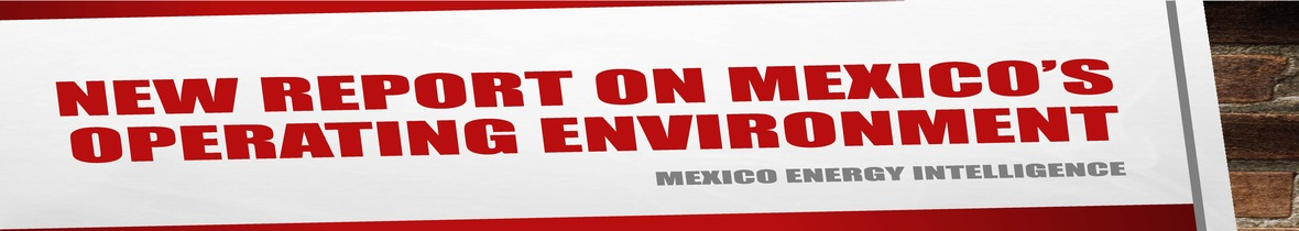 Banner - New Report on Mexico s Operating Environment