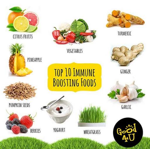 immune foods