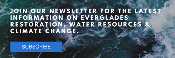 Email Header -Newsletter - Water 5